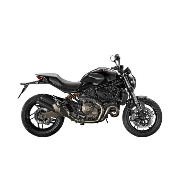 Ducati Monster from 2010 and younger (standard Swingarm) JoNich